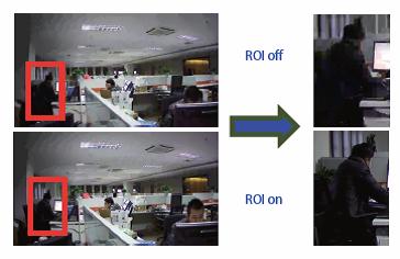 Ultra Smart Funzione ROI