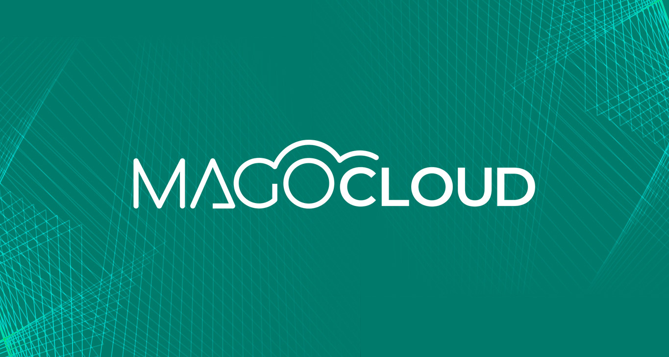 Mago in Cloud: software gestionale in infrastruttura cloud